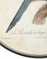 Тарелка настенная с узором Ginori 1735  –  Деталь1